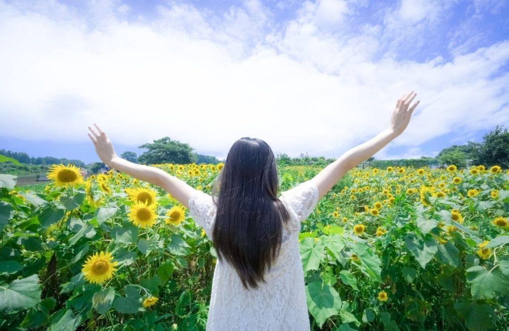 まとめ【無料seo対策】具体的な方法7つと、その理由をお伝えします。